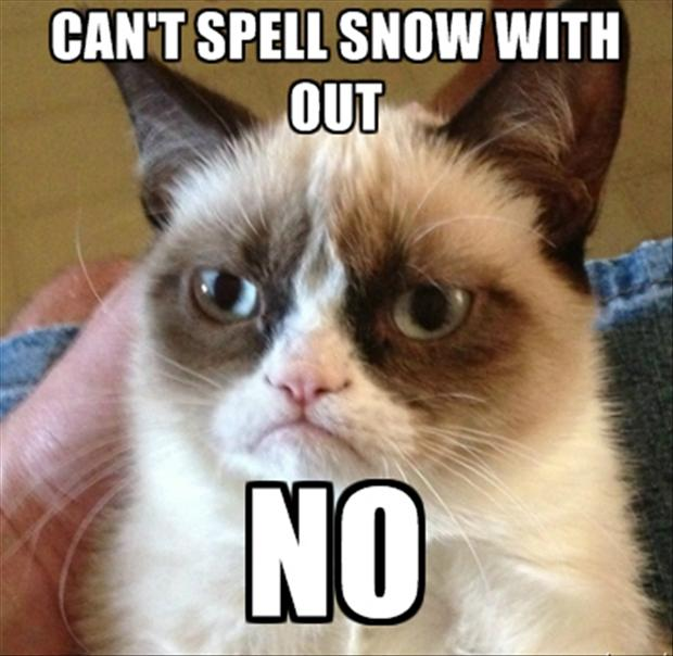 grumpy-cat-you-can-not-spell-snow-without-no